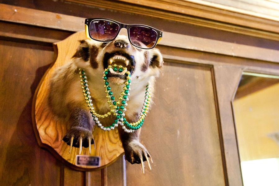 Honey Badger's chill cousin.