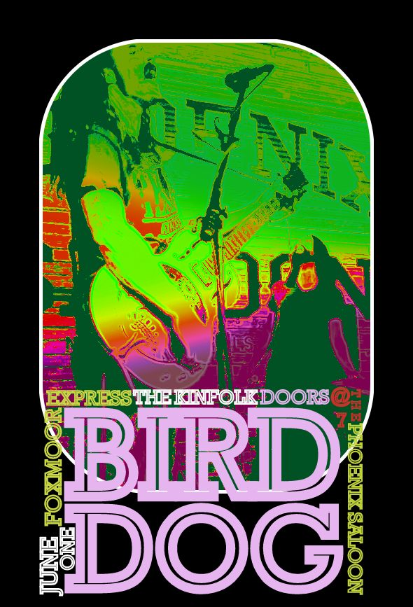 bird dog 2013june